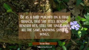 Be as a bird perched on a frail branch that she feels bending beneath her still she sings away all Victor Hugo Quotes