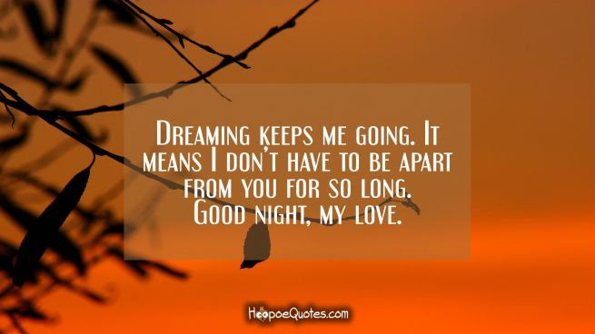 Dreaming keeps me going. It means I don't have to be apart from you for so long. Good night, my love.