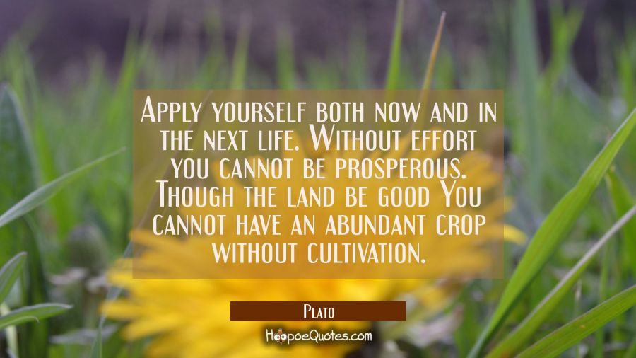 Apply yourself both now and in the next life. Without effort you cannot be prosperous. Though the l Plato Quotes