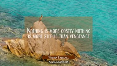 Nothing is more costly nothing is more sterile than vengeance