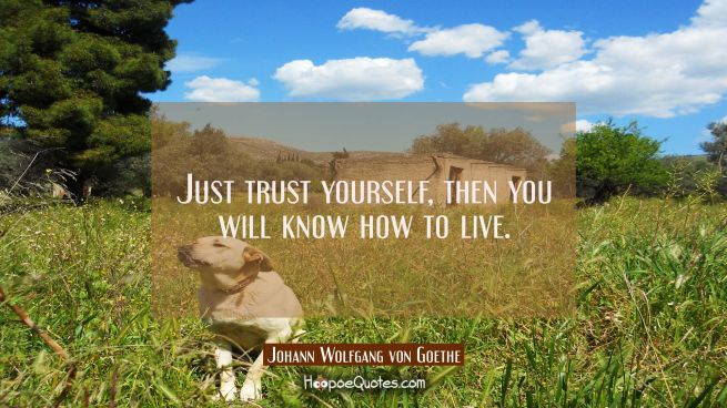 Just trust yourself then you will know how to live.