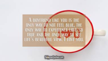 A boyfriend like you is the only way to not feel blue, the only way to experience love so true and the only way to see life's beautiful view. I love you. I Love You Quotes