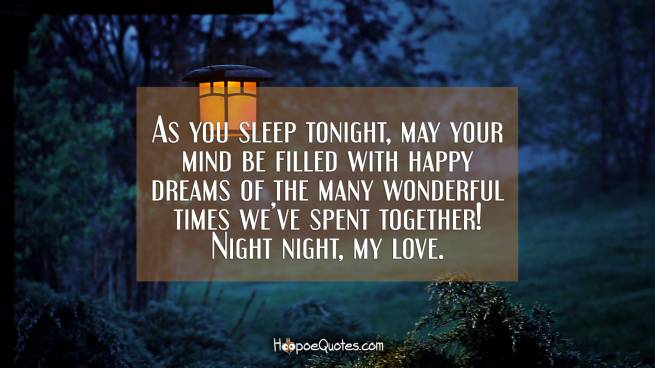 As you sleep tonight, may your mind be filled with happy dreams of the many wonderful times we've spent together! Night night, my love.