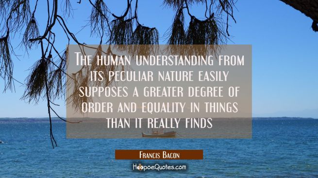 The human understanding from its peculiar nature easily supposes a greater degree of order and equa