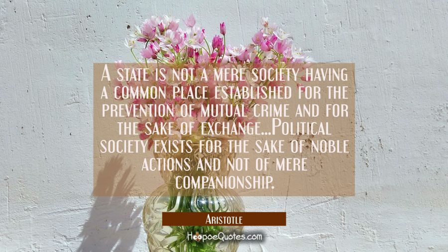 A state is not a mere society having a common place established for the prevention of mutual crime Aristotle Quotes