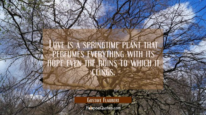 Love is a springtime plant that perfumes everything with its hope even the ruins to which it clings