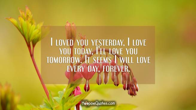 I loved you yesterday, I love you today, I'll love you tomorrow. It seems I will love every day, forever.