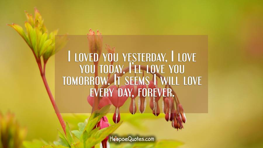 I loved you yesterday, I love you today, I'll love you tomorrow. It seems I will love every day, forever. I Love You Quotes