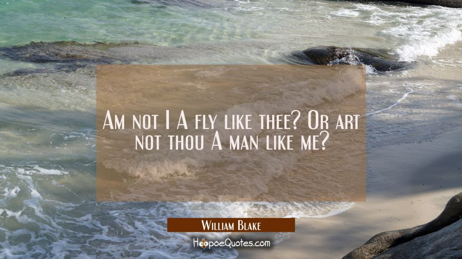 Am not I A fly like thee? Or art not thou A man like me? William Blake Quotes