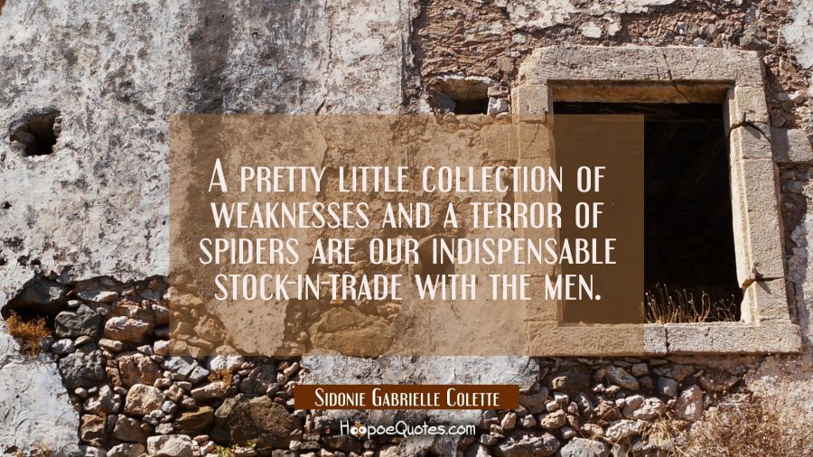 A pretty little collection of weaknesses and a terror of spiders are our indispensable stock-in-tra Sidonie Gabrielle Colette Quotes