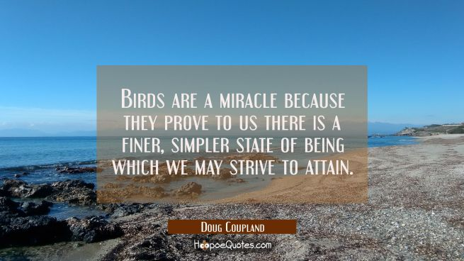Birds are a miracle because they prove to us there is a finer simpler state of being which we may s