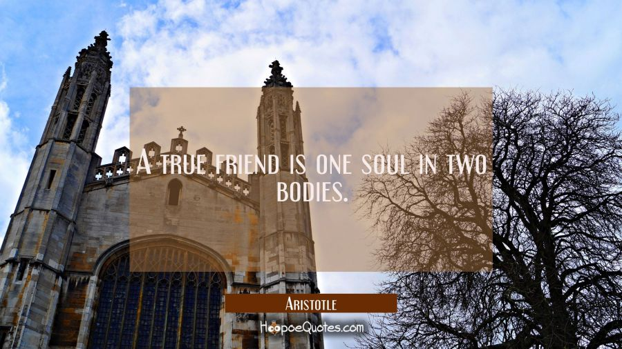 A true friend is one soul in two bodies. Aristotle Quotes