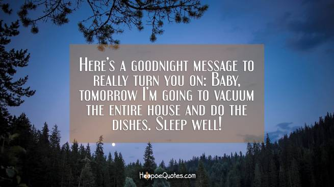 Here's a goodnight message to really turn you on: Baby, tomorrow I'm going to vacuum the entire house and do the dishes. Sleep well!