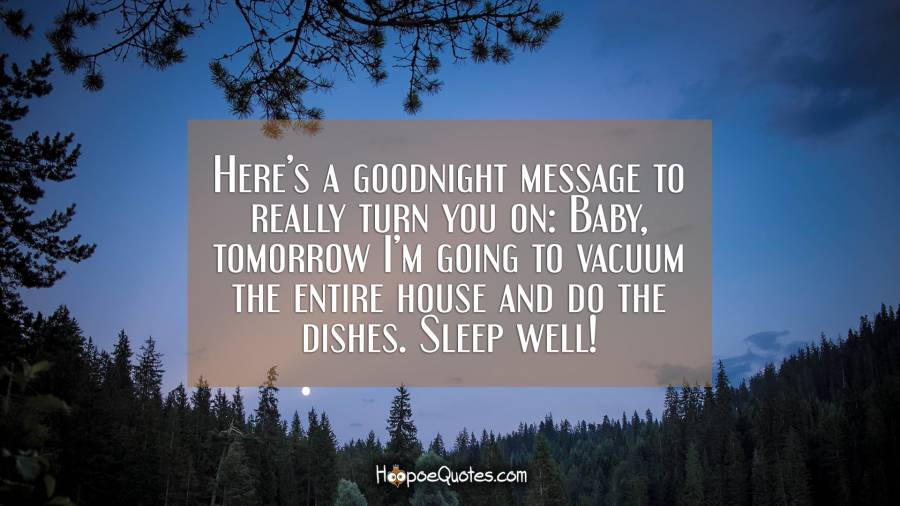 Here's a goodnight message to really turn you on: Baby, tomorrow I'm going to vacuum the entire house and do the dishes. Sleep well! Good Night Quotes