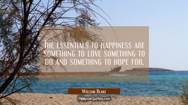 The essentials to happiness are something to love something to do and something to hope for.
