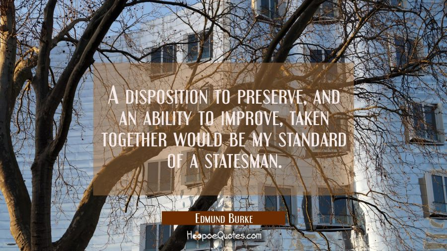 A disposition to preserve and an ability to improve taken together would be my standard of a states Edmund Burke Quotes