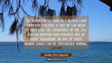 No aquarium no tank in a marine land however spacious it may be can begin to duplicate the conditio
