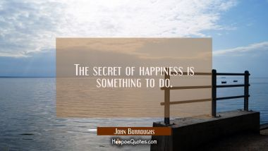 The secret of happiness is something to do.