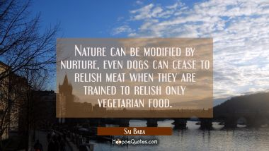 Nature can be modified by nurture, even dogs can cease to relish meat when they are trained to reli Sai Baba Quotes