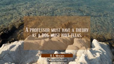 A professor must have a theory as a dog must have fleas.