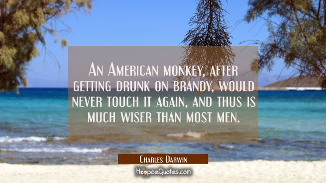 An American monkey after getting drunk on brandy would never touch it again and thus is much wiser
