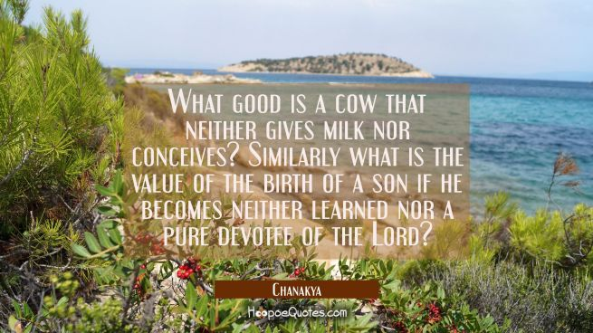 What good is a cow that neither gives milk nor conceives? Similarly what is the value of the birth
