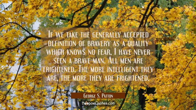 If we take the generally accepted definition of bravery as a quality which knows no fear I have nev