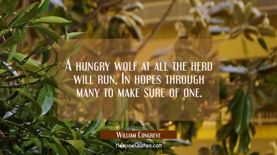 A hungry wolf at all the herd will run In hopes through many to make sure of one. William Congreve Quotes