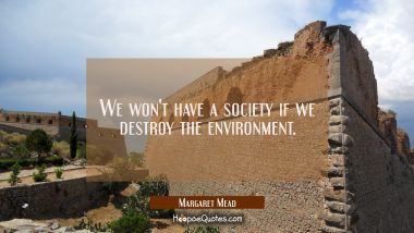 We won't have a society if we destroy the environment. Margaret Mead Quotes
