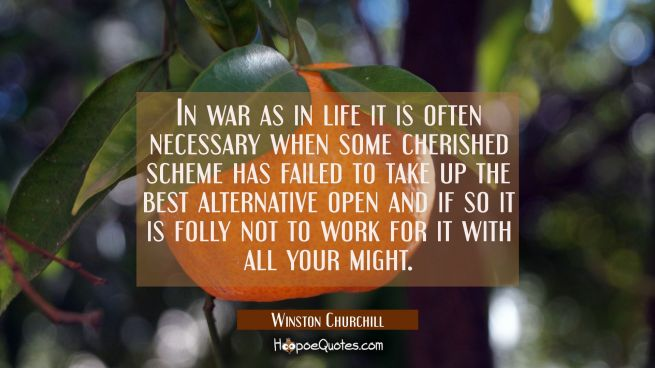 In war as in life it is often necessary when some cherished scheme has failed to take up the best a