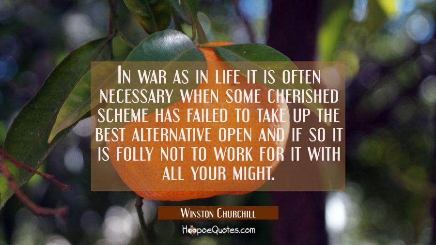 In war as in life it is often necessary when some cherished scheme has failed to take up the best a Winston Churchill Quotes