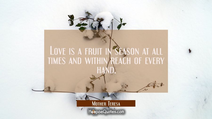 Love is a fruit in season at all times and within reach of every hand. Mother Teresa Quotes