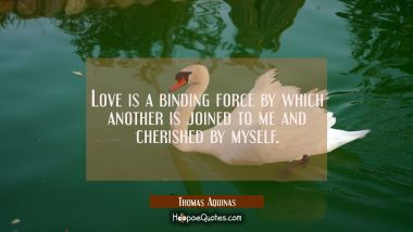 Love is a binding force by which another is joined to me and cherished by myself.