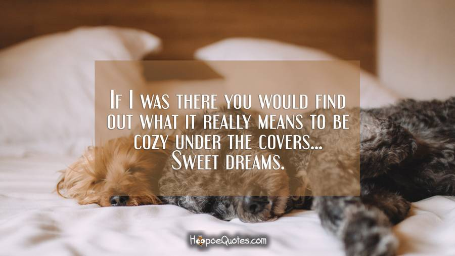 If I was there you would find out what it really means to be cozy under the covers... Sweet dreams. Good Night Quotes