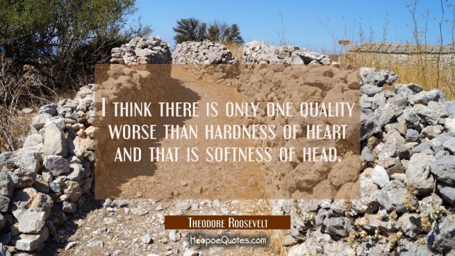 I think there is only one quality worse than hardness of heart and that is softness of head.