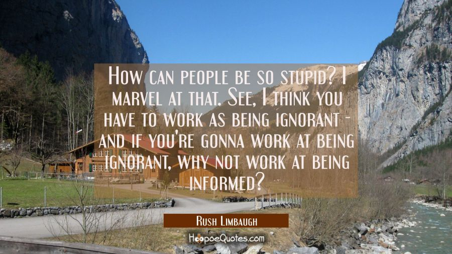 How can people be so stupid? I marvel at that. See I think you have to work as being ignorant - and Rush Limbaugh Quotes