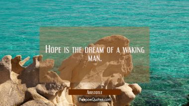 Hope is the dream of a waking man.