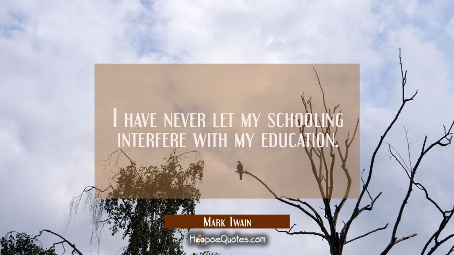 i never let schooling interfere with my education