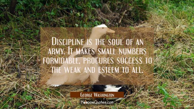 Discipline is the soul of an army. It makes small numbers formidable, procures success to the weak