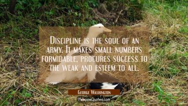 Discipline is the soul of an army. It makes small numbers formidable, procures success to the weak George Washington Quotes