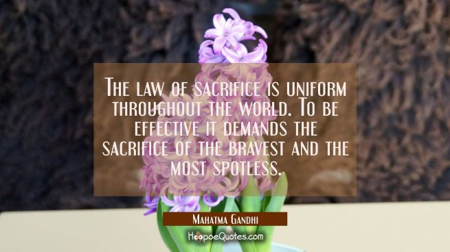 The law of sacrifice is uniform throughout the world. To be effective it demands the sacrifice of t