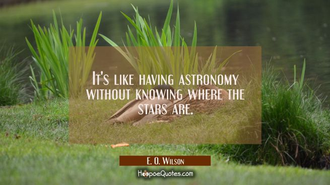 It's like having astronomy without knowing where the stars are.
