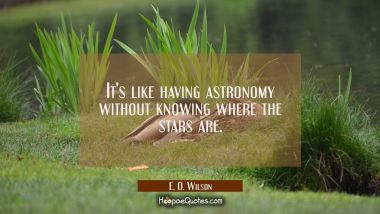 It's like having astronomy without knowing where the stars are. E. O. Wilson Quotes