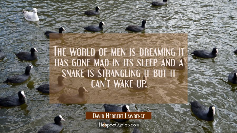 The world of men is dreaming it has gone mad in its sleep and a snake is strangling it but it can't David Herbert Lawrence Quotes