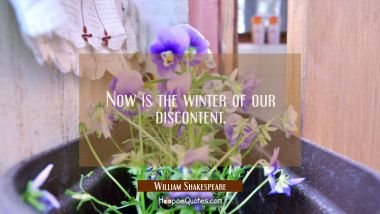 Now is the winter of our discontent. William Shakespeare Quotes