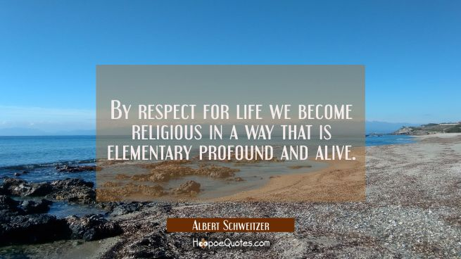 By respect for life we become religious in a way that is elementary profound and alive.