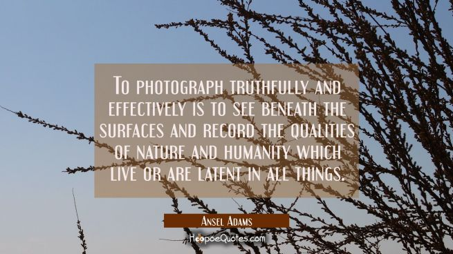 To photograph truthfully and effectively is to see beneath the surfaces and record the qualities of