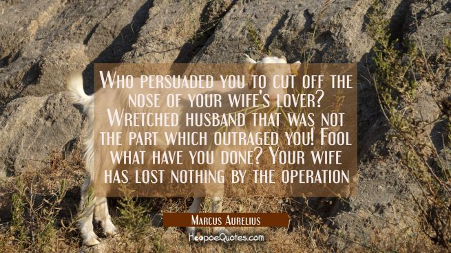 Who persuaded you to cut off the nose of your wife's lover? Wretched husband that was not the part