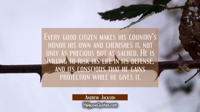 Every good citizen makes his country's honor his own and cherishes it not only as precious but as s