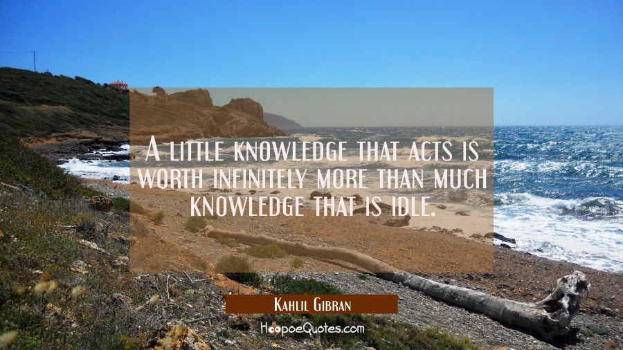 A little knowledge that acts is worth infinitely more than much knowledge that is idle. Kahlil Gibran Quotes